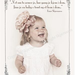 "Postkort ""Viola rose"""