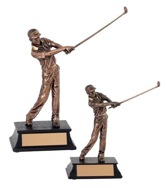 Golfswing Herr