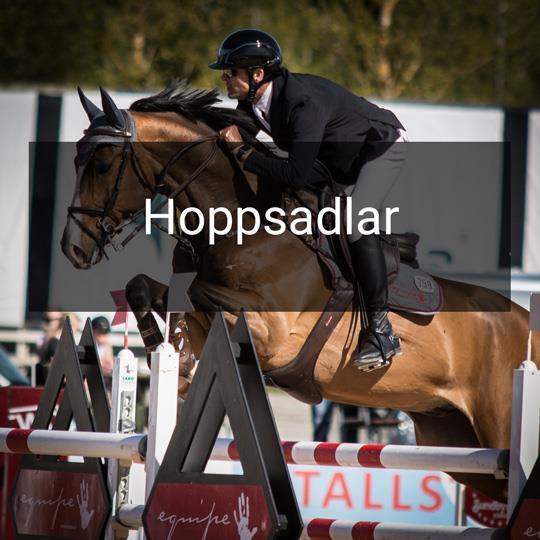 Equipe Hoppsadlar