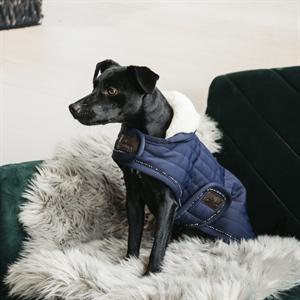 Dog Coat Pearls