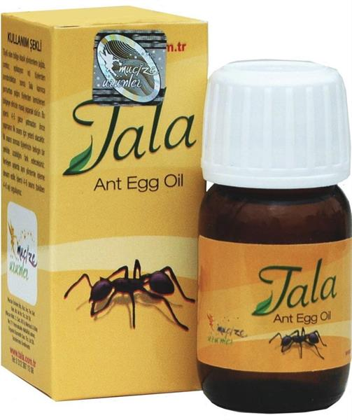 Tala - ant-egg-oil