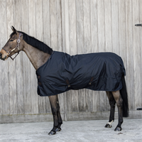 Turnout Rug All Weather Waterproof 150 g