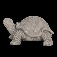 Sköldpadda keramik