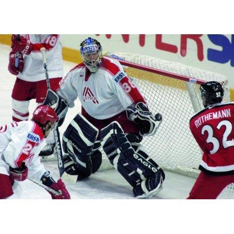 Ishockeymålnät  Intern, Enligt IIHF