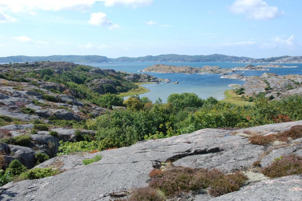 Stigfjordens natur var föremål för mycket fält- och rapportarbete 2017. Foto Olle Molander
