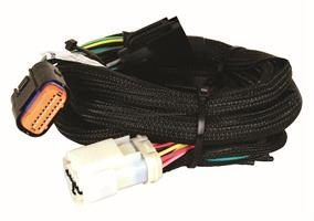 Harness, Ford AODE/4R70W, 92-97