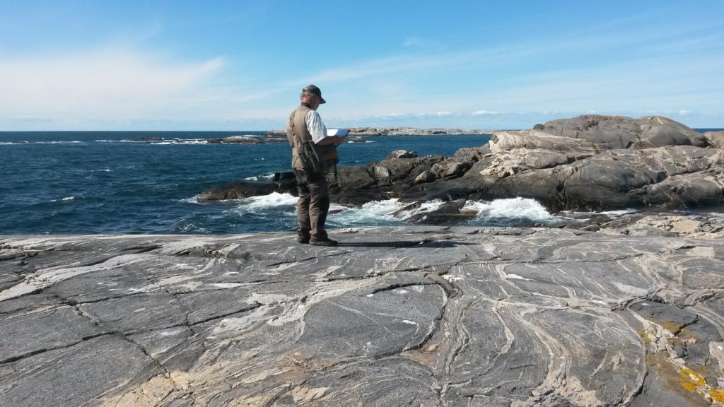 Under sommaren 2017 inventerades flertalet öar i Kosterhavets nationalpark. Foto Olle Molander