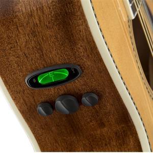 Fender PM2 STD NAT