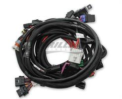 MAIN HARNESS, FORD COYOTE TI-VCT SMART