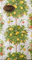 Buffet serviett Citrus white, 15stk 3lags
