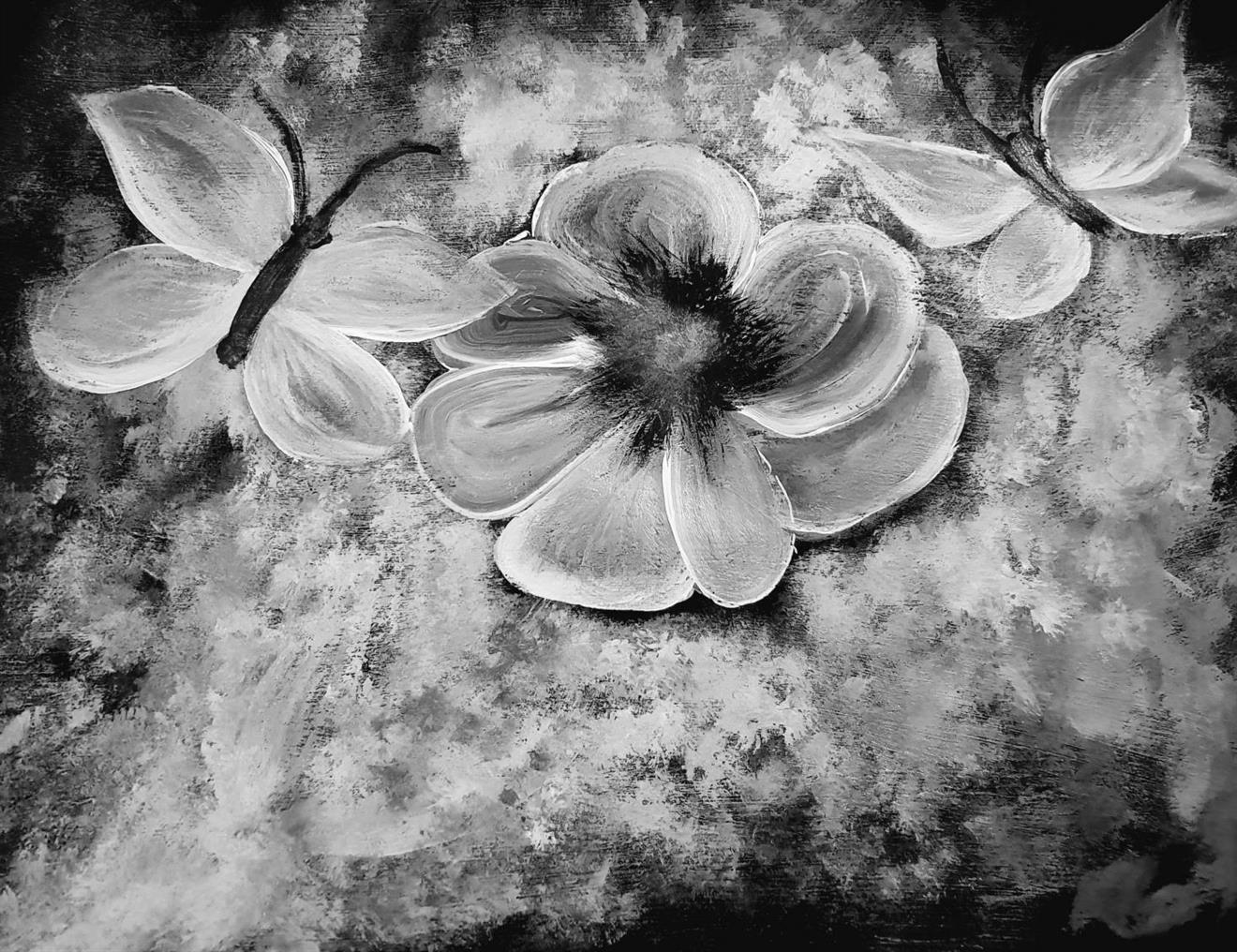 Fotoposters  30x40 cm,fjäril svart-vitt