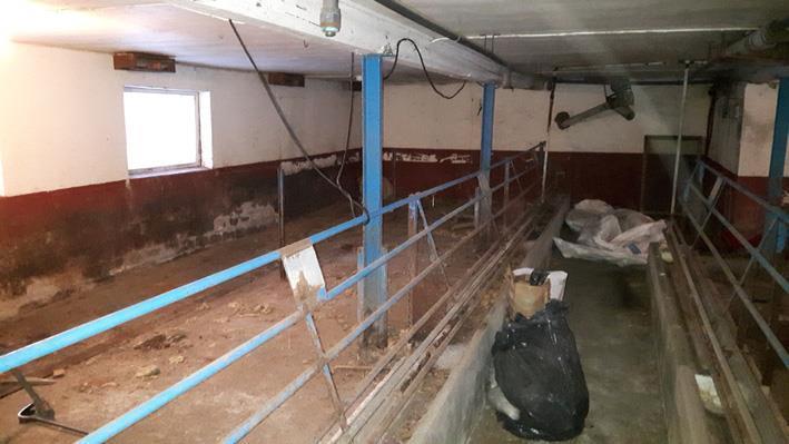 Stalldelen var byggd för grisar o skall nu inhysa hästar.