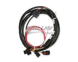DBW HARNESS, FORD 3V AND GT500