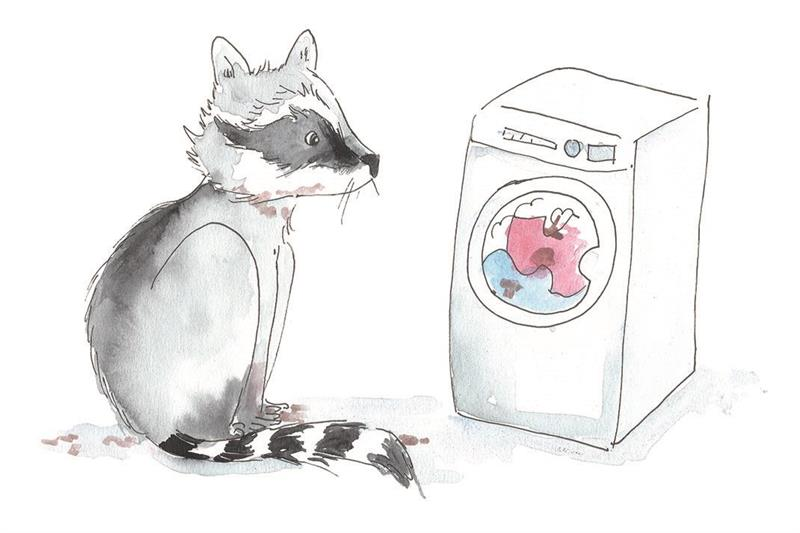 I tvättmaskinen - lösnot