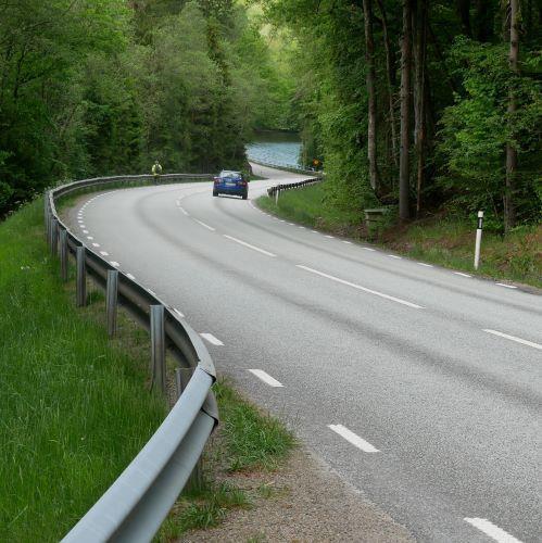 Naturvärdesinventering vid Svartenbacken på väg 153 i Halland.