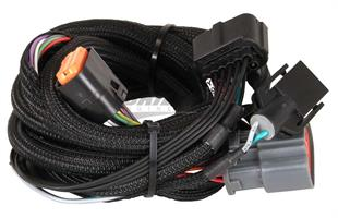 Harness, Ford 4R100, 98-Up