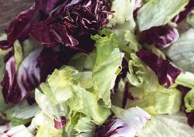Salatblandig 1 kg