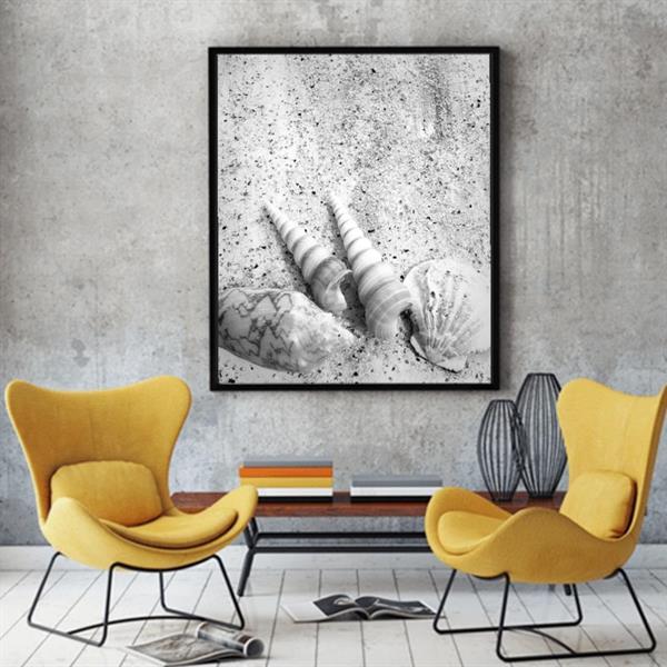 Fotoposters  30x40 cm,snäckor