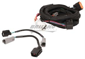 Harness, Ford (4R70W/75W) 98-Up