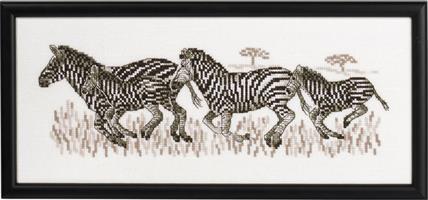 Tavla springande zebror