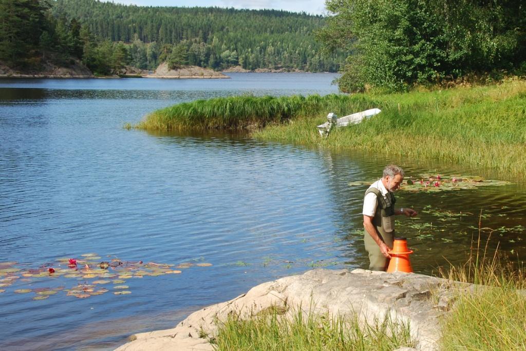 Inventering av skaftslamkrypa i Kärnsjön. Foto Tore Mattsson