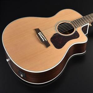 Walden G630CEW El.-Acoustic Guitar