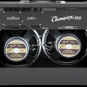 Fender Champion™ 100