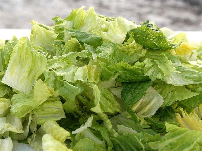 Salat Romano, 1 kg