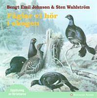 Fåglar vi hör i skogen