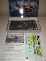 P-40E Warhawk 'Aleutian Tiger'