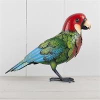 Papegoja färggrann