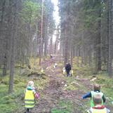 Blåbærtur i skogen