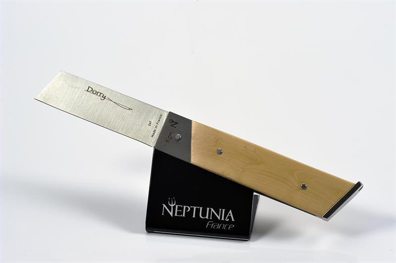Neptunia Dorry Buxbom