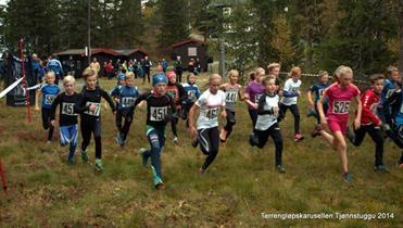 Første skitrening for gruppen 8-10 år er mandag 15. oktober kl 1800 på Tjønnstuggu