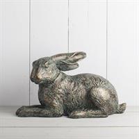Hare liggande