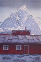 Eva Harr-Reine-En vinterreise