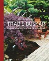 Träd och buskar för balkonger och små trädgårdar