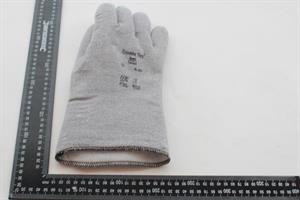 Glove 6HDSGLGEW-290, 10