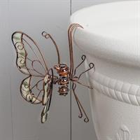Fjäril, självlysande, att hänga