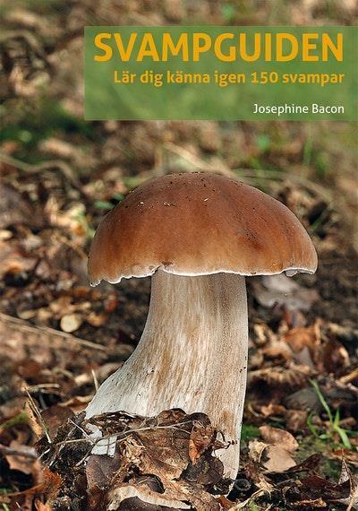 Svampguiden : lär dig känna igen 150 svampar