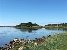 Åse Juul - Sommer ved kysten