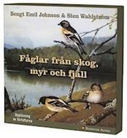 Fåglar från skog, myr och fjäl