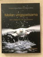 Mellan Vingspetsarna - Kartonnage