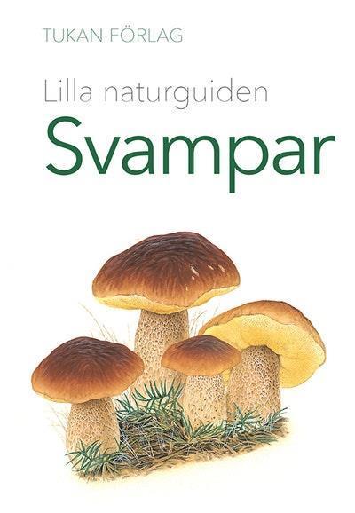 Lilla naturguiden: svampar