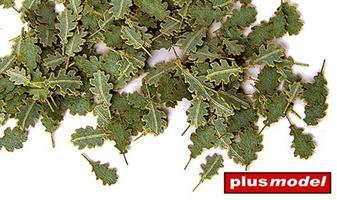 Eikeblader grønne