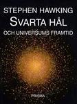 Svarta hål och universums framtid