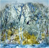 Liz Ravn - Forest of fall