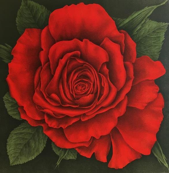 Jan Harr - Rose vermillion