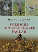 Sveriges 100 vanligaste fåglar