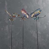 Fjäril stick, sorterad